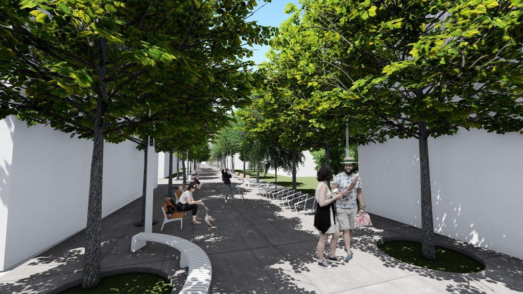 Lunca Pomostrului Street Design   project